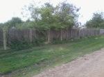 Gard cimitir A5
